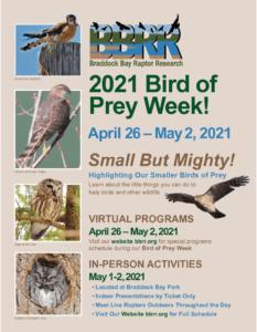 2021 Bird of Prey Week Flyer
